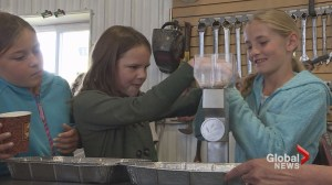 Southern Alberta producers team up to teach Calgary kids about modern farming